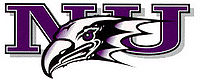 College Basketball Photos - Niagara Purple Eagles - Niagara Purple Eagles athletic logo
