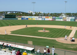 College Football Photos - Bethune-Cookman Wildcats - The Wildcats baseball team taking on Florida A&M at Jackie Robinson Ballpark
