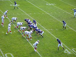 College Football Photos - Holy Cross Crusaders - Holy Cross football team playing Brown on October 7