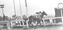 Horse Racing Photos - Man O' War - Man o' War in the 1920 Stuyvesant Handicap