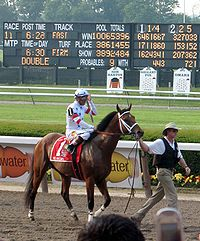 Horse Racing Photos - Big Brown