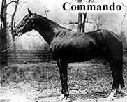 Horse Racing Photos - Commando