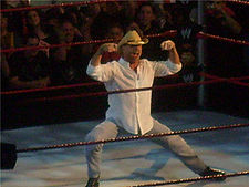 Sports Photos - Shawn Michaels - Michaels performing his signature pose.