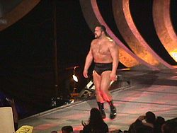 Sports Photos - The Big Show (Paul Wight)