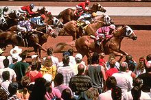 Horse Racing Photos - Ruidoso Downs Race Track - Horse racing at Ruidoso Downs