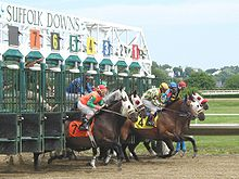 Horse Racing Photos - Suffolk Downs - Starting Gate at Suffolk Downs. East Boston