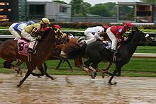 Horse Racing Photos - Churchill Downs