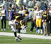 Football Photos - Hines Ward - Ward makes a tough catch against the Baltimore Ravens in 2006.