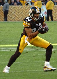 Football Photos - Hines Ward