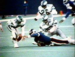 Football Photos - The Miracle At The Meadowlands - Herman Edwards recovers Joe Pisarcik's fumble in The Miracle at the Meadowlands.
