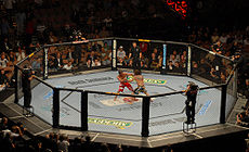 Sports Photos - Ufc - Shot of The Octagon from <i>UFC 74</i>&#160;; Clay Guida vs. Marcus Aurelio