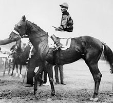 Horse Racing Photos - Triple Crown - Sir Barton