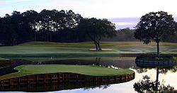 Golf Photos - Tpc At Sawgrass - TPC at Sawgrass