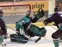 Hockey Photos - Ilya Bryzgalov - Ilya Bryzgalov playing for the Cincinnati Mighty Ducks.