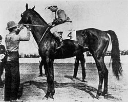 Horse Racing Photos - 1904 KentuckyDerby - 1904 Kentucky Derby winner Elwood