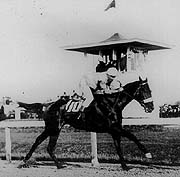 Horse Racing Photos - 1914 KentuckyDerby - Old Rosebud winning the 1914 Kentucky Derby
