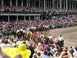 Horse Racing Photos - 2010 Kentucky Derby - Procession to the starting gate.
