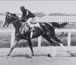 Horse Racing Photos - 1902 KentuckyDerby - James Winkfield aboard Alan-a-Dale in 1902