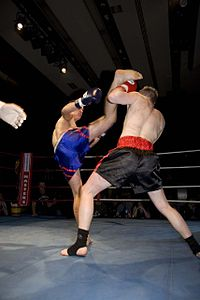 Boxing Photos - Kickboxing - High kick block