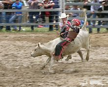 Sports Photos - Rodeo Clown - A rodeo clown assisting a junior calf rider.