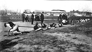 Olympics Photos - 1904 Olympic Games - A tug-of-war competition at the 1904 Summer Olympics.