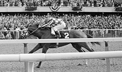 Horse Racing Photos - 1973 Belmont Stakes - Secretariat in the Belmont