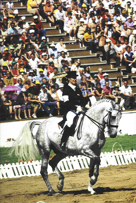 Horse Racing Photos - Dressage - Dressage at the 1980 Summer Olympic games