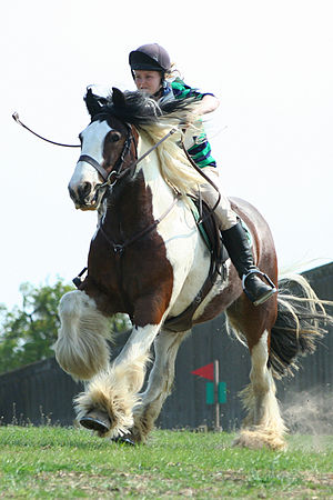 Horse Racing Photos - Cross-Country Equestrianism - At the lower levels