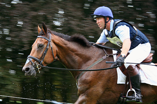 Horse Racing Photos - Cross-Country Equestrianism - Horses must be exceptionally fit to compete at the higher levels
