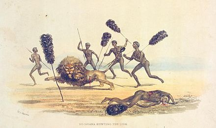 Sports Photos - Hunting - Africans hunting the lion, 1841