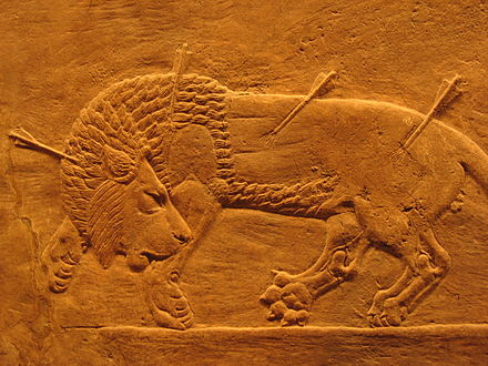Sports Photos - Lion Hunting - Assyrian royal lion hunt, from the North Palace of Nineveh (room C, panel 25-28), 645