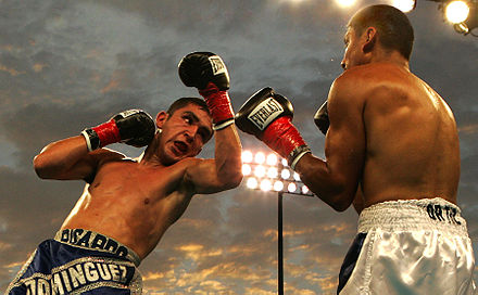 Boxing Photos - Boxing - Ricardo Dominguez (left) throws an uppercut on Rafael Ortiz (right).
