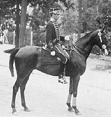 Olympics Photos - 1912 Summer Olympics - Axel Nordlander, who won two gold medals for Sweden in the dressage