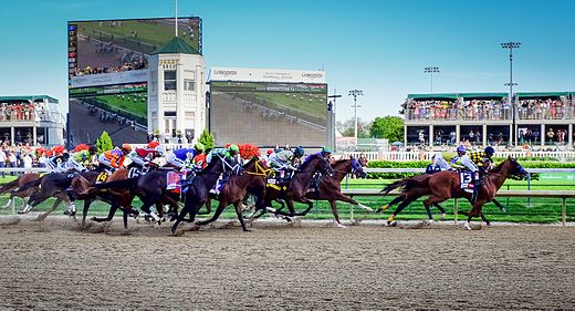 Horse Racing Photos - 2014 Kentucky Derby - The 2014 Kentucky Derby field. Winner California Chrome is the third horse from the right.